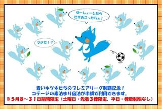 青いキツネ - コピー.jpg